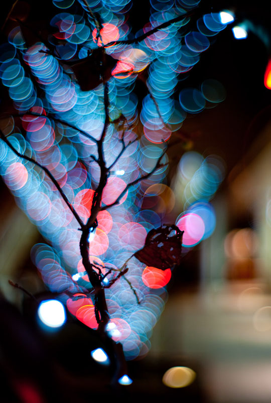 Outside Christmas Net Lights