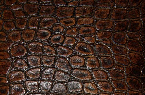 free leather texture