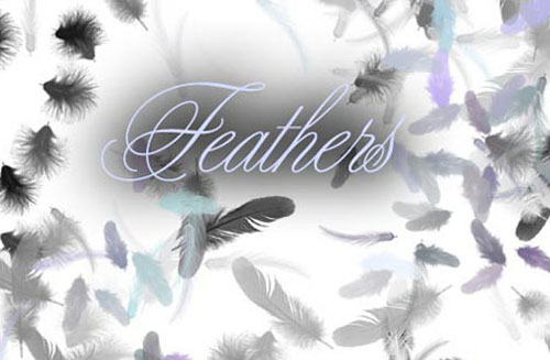 1.photoshop feather brushes