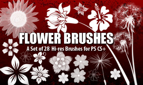 100+ Free Flower Brushes For Photoshop | Designbeep