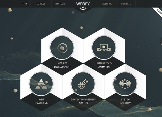Showcase of Websites Using Hexagons