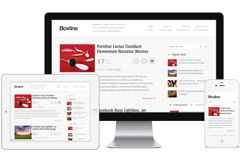 Boxline-WordPress-Theme