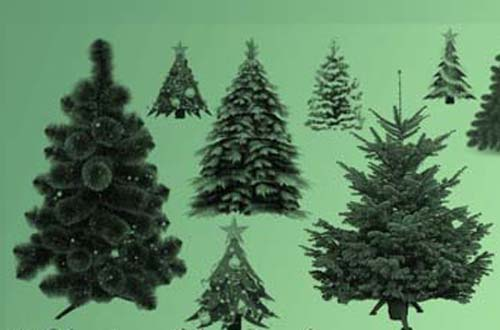 christmas tree and ornament brushes