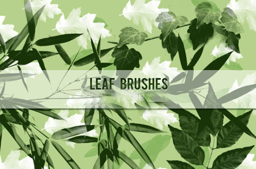 photoshop leaf brushes
