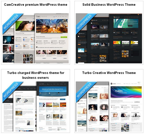 Professional WordPress Themes