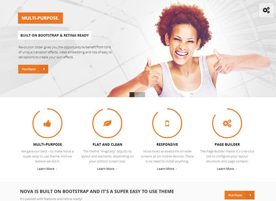 1.flat responsive wordpress themes