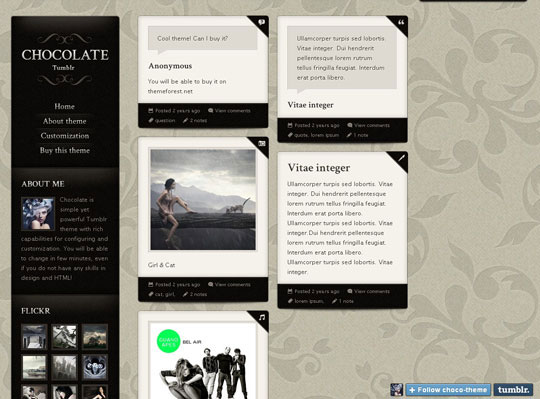 13.best tumblr themes