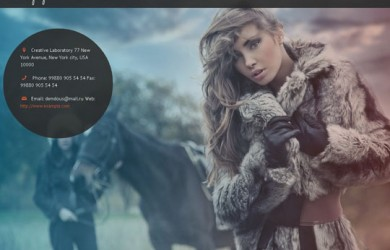 15.Fullscreen wordpress themes