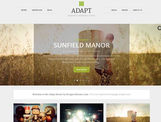 20.grid wordpress themes