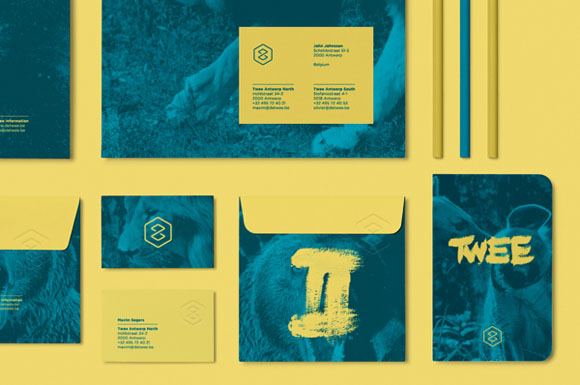 11.Visual Identity and Branding Series  Twee Branding
