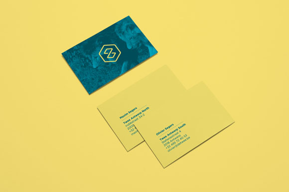 14.Visual Identity and Branding Series  Twee Branding