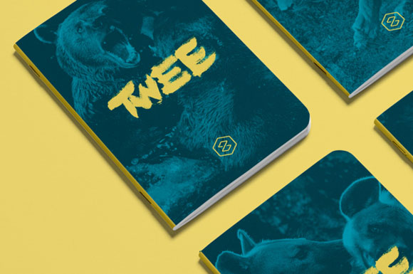 8.Visual Identity and Branding Series  Twee Branding