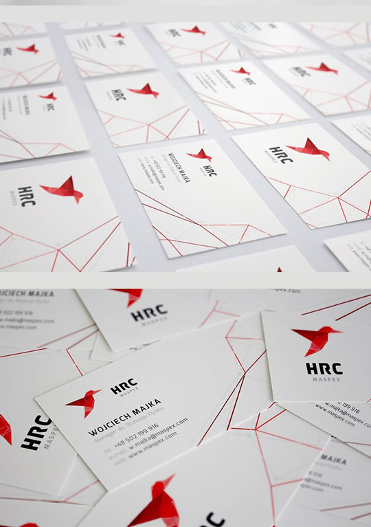 Visual Identity and Branding Series  HRC Maspex_13