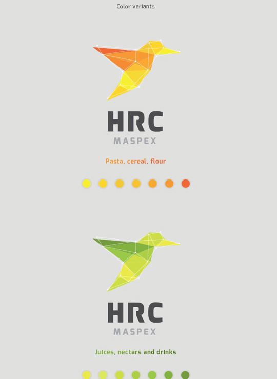 Visual Identity and Branding Series  HRC Maspex_7