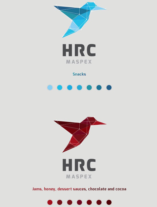 Visual Identity and Branding Series  HRC Maspex_8