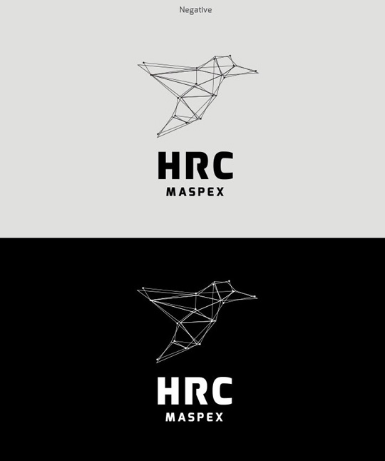Visual Identity and Branding Series  HRC Maspex_9