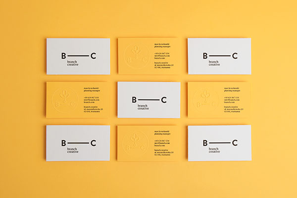 6.Visual Identity and Branding Series  Branch Creative