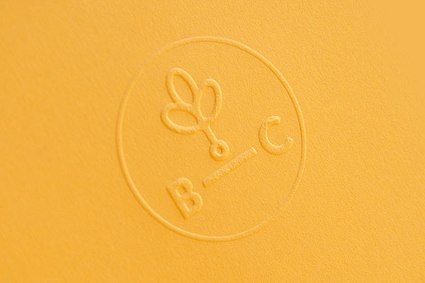 7.Visual Identity and Branding Series  Branch Creative