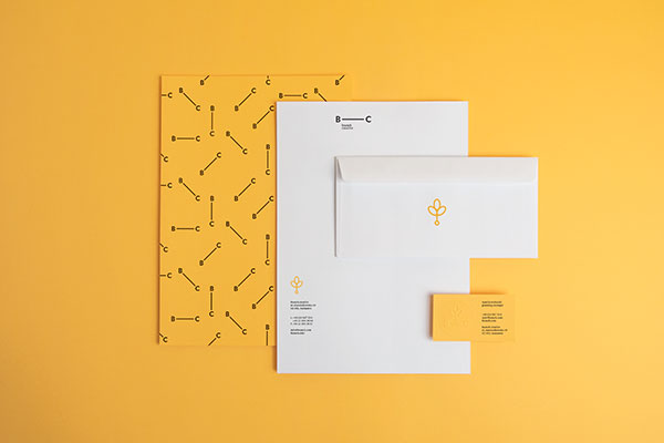 8.Visual Identity and Branding Series  Branch Creative