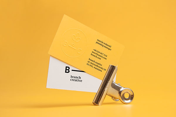 9.Visual Identity and Branding Series  Branch Creative