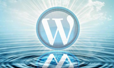 Wordpress-11