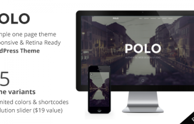 polo-wp-promo.__large_preview