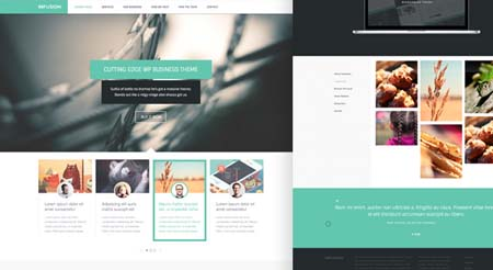 infusion-free-website-templates-1