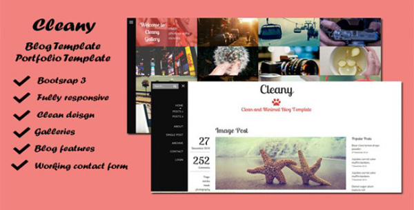 Cleany-Blog-and-Portfolio-Template