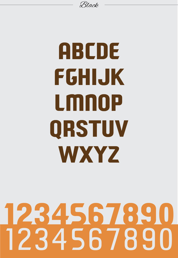 5.Free Font Of The Day  Paragon