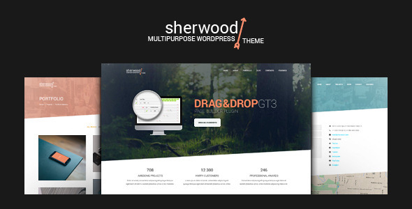 One Page and Multipage WordPress Theme