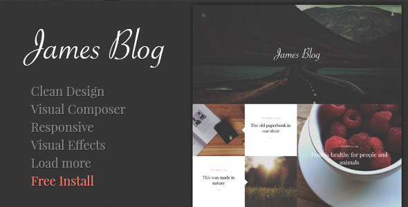 WP Theme Of the Day #307 – James Blog – Clean, Simple Personal ...