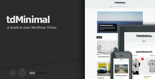 3.best-minimal-wordpress-themes