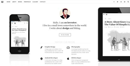 33.best-minimal-wordpress-themes