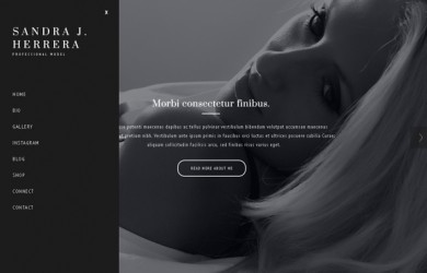 fashion-wordpress-theme