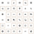 material icons feature