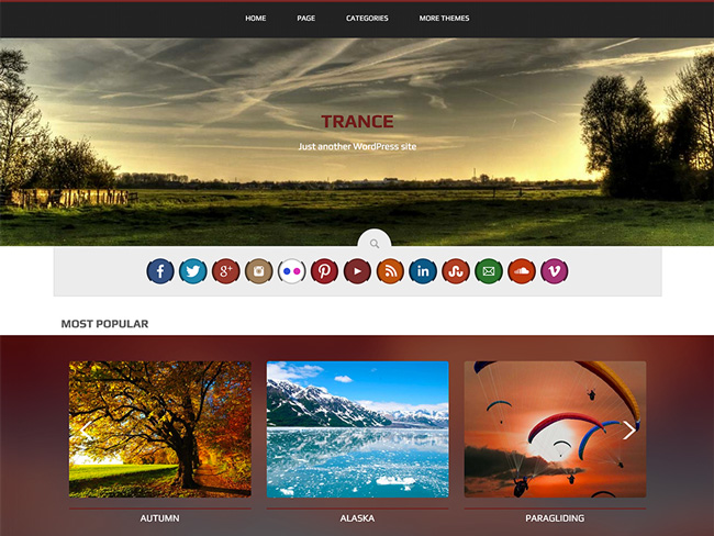 5.new wordpress theme