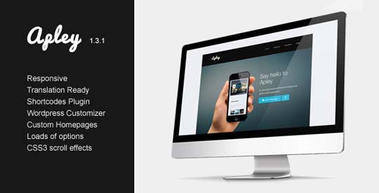 22.wordpress landing page theme