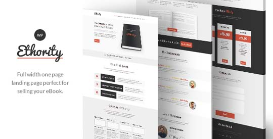 30.wordpress landing page theme