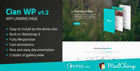 8.wordpress landing page theme