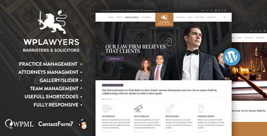9.lawyer wordpress theme
