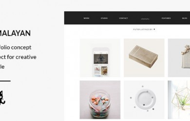 Modern-Portfolio-Wordpress-Theme