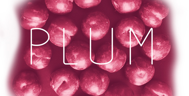 1.Free Font Of The Day  Plum