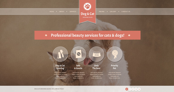 Cat-Website-Template