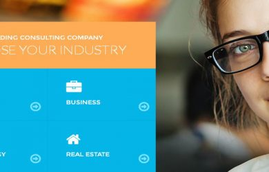 business-wordpress-theme-feature