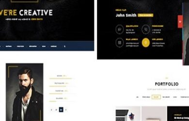 portfolio wp theme feature